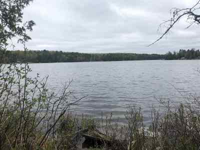 Residential Lots & Land Active-No Offer: Munger Lake