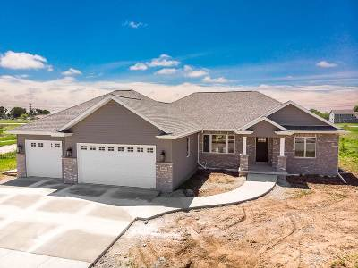 Appleton Single Family Home Active-No Offer: 5354 N Amethyst