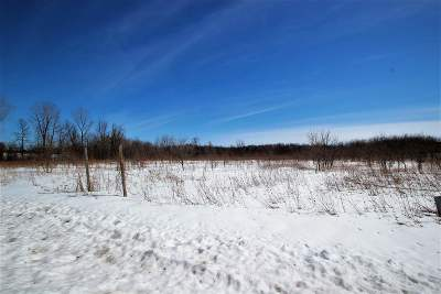 Pulaski Residential Lots & Land Active-No Offer: South Chase