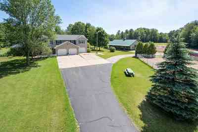 Howard, Suamico Single Family Home Active-No Offer: 1872 Susie