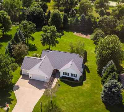 Appleton Single Family Home Active-Offer No Bump-Show: 6273 N Preservation