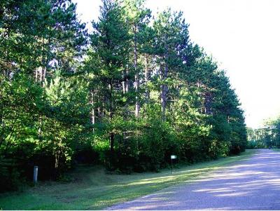 Waupaca Residential Lots & Land Active-No Offer: N290 Park