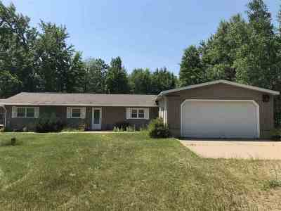 Marinette Single Family Home Active-No Offer: N20601 Hobert