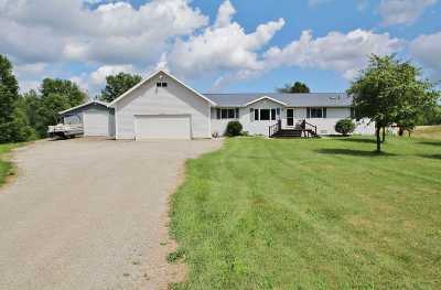 Oconto County Single Family Home Active-No Offer: 6552 Tower Drive