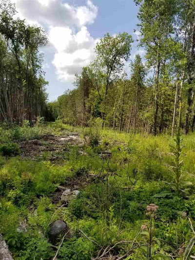 Oconto County Residential Lots & Land Active-No Offer: Sampson