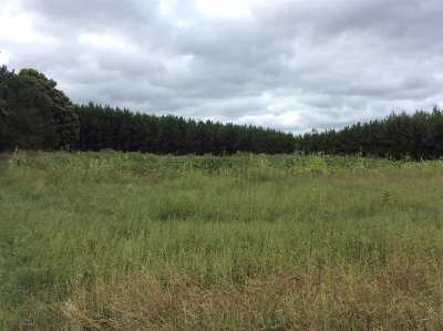 Shawano County Residential Lots & Land Active-No Offer: W10466 Geider