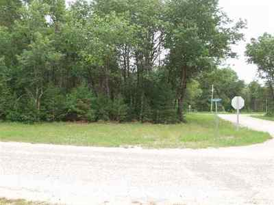 Friendship Residential Lots & Land For Sale: L21 Chicago Ln