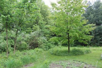Middleton WI Residential Lots & Land For Sale: $190,000