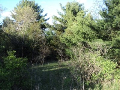Wisconsin Dells Residential Lots & Land For Sale: L56-58 S Fur Dr