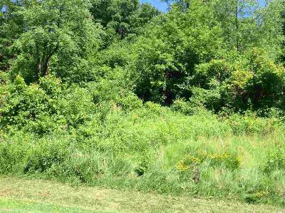 Waterloo Residential Lots & Land For Sale: 1.46 Ac Dalman Rd