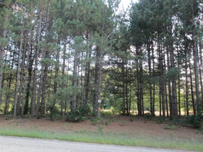 Adams Residential Lots & Land For Sale: 1079 Ember Dr