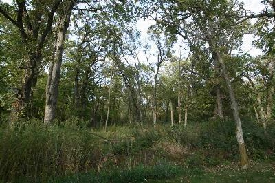 Verona Residential Lots & Land For Sale: Lot 16 Watch Hill Ct