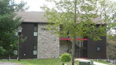 Wisconsin Dells Condo/Townhouse For Sale: 3 Chestnut Tr #C3