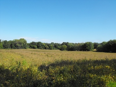 Madison Residential Lots & Land For Sale: 4952 Felland Rd