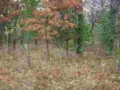 Wisconsin Dells Residential Lots & Land For Sale: L14 County Road H