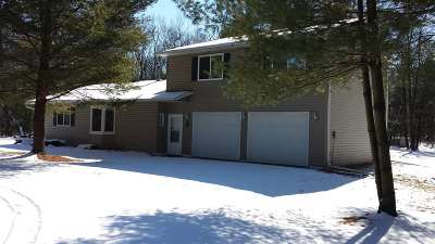 Wisconsin Dells Single Family Home For Sale: 771 Fur Ave