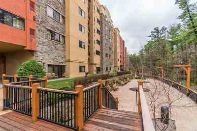 Wisconsin Dells Condo/Townhouse For Sale: 2411 River Rd #2426