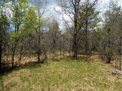 Wisconsin Dells Residential Lots & Land For Sale: 10 Ac County Road K