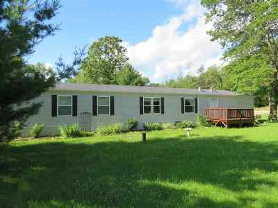 Wisconsin Dells Single Family Home For Sale: N325 Center St