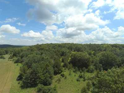 Poynette WI Residential Lots & Land For Sale: $350,000