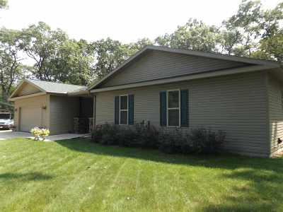 Wisconsin Dells Single Family Home For Sale: 4140 8th Ave