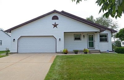 Cottage Grove Single Family Home For Sale: 232 W Parkview St