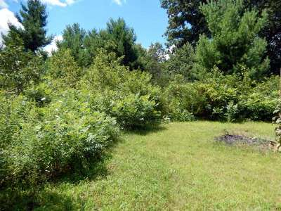Wisconsin Dells Residential Lots & Land For Sale: W1076 County Road J