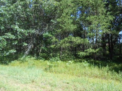 Adams WI Residential Lots & Land For Sale: $9,400