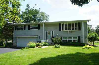 Dane County Single Family Home For Sale: 3737 Lance Ln