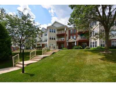 Monona Condo/Townhouse For Sale: 129 Shato Ln