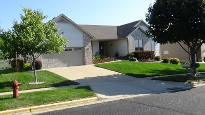 Cottage Grove Single Family Home For Sale: 208 Molly Ln