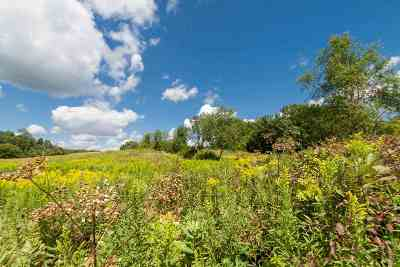 Verona Residential Lots & Land For Sale: L3 Spring Rose Rd