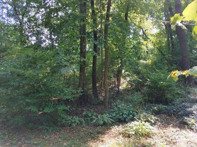 Madison Residential Lots & Land For Sale: 1833 Thorstrand Rd