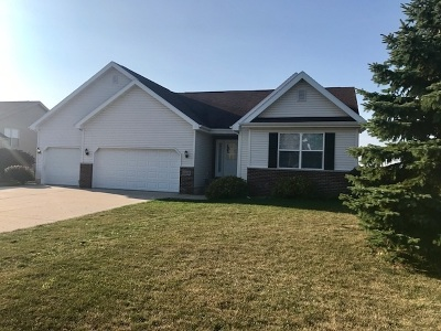 Sun Prairie Single Family Home For Sale: 3223 Bookham Dr
