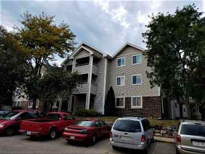 Madison Condo/Townhouse For Sale: 1124 Morraine View Dr #203