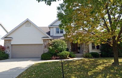 Madison Single Family Home For Sale: 917 Amnicon Tr