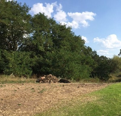 Middleton Residential Lots & Land For Sale: 9705 Shadow Ridge Tr
