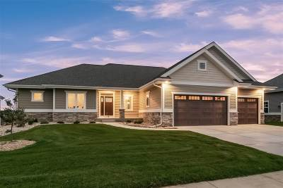 Dane County Single Family Home For Sale: 813 Victor Ln