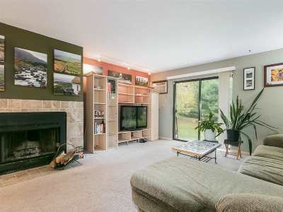 Madison Condo/Townhouse For Sale: 1013 N Sunnyvale Ln #C