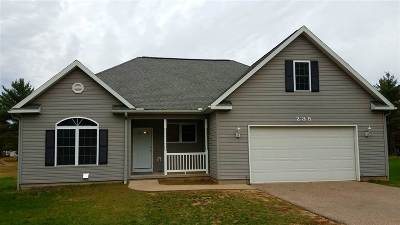 Wisconsin Dells Single Family Home For Sale: 235 Ridgewood St