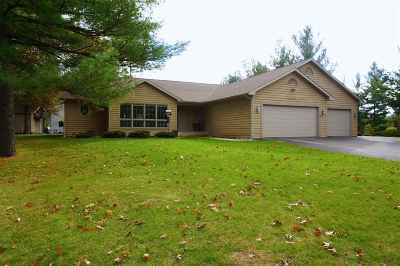 Wisconsin Dells Single Family Home For Sale: 1610 Pleasant View Dr