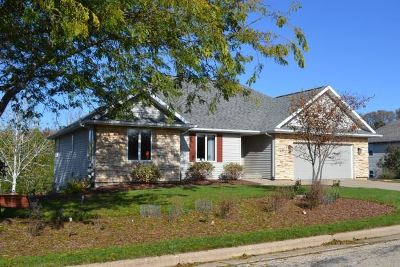 Dodgeville Single Family Home For Sale: 700 Prairie Hills Dr