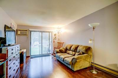 Madison Condo/Townhouse For Sale: 1007 N Sunnyvale Ln #B