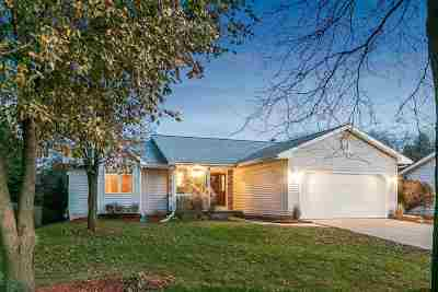 Dane County Single Family Home For Sale: 1037 Fountain Dr
