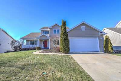 Dane County Single Family Home For Sale: 314 Ridge View Tr