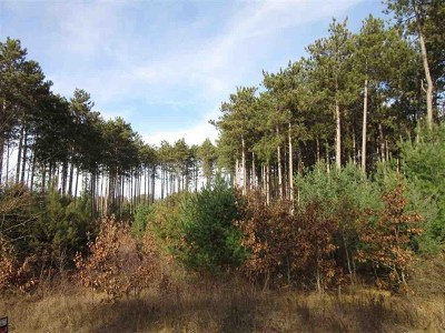 Wisconsin Dells Residential Lots & Land For Sale: L1 Gulch Ave