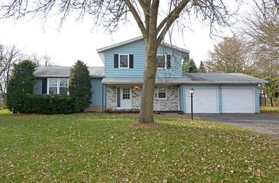 Dane County Single Family Home For Sale: 2924 Dellvue Dr