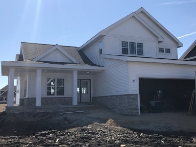 Waunakee Single Family Home For Sale: 1106 Guinness St