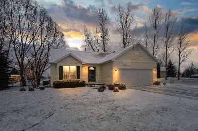 Waterloo Single Family Home For Sale: 252 Goehl Rd