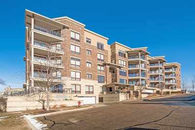 Monona Condo/Townhouse For Sale: 101 Ferchland Pl #406